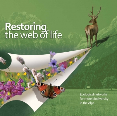 Restoring the web of life