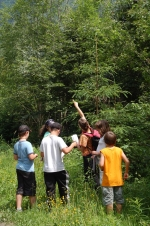 Climate & Education: take part in a participative project with your park