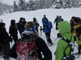 Winter sports and wildlife: the launching of a working group on an Alpine scale