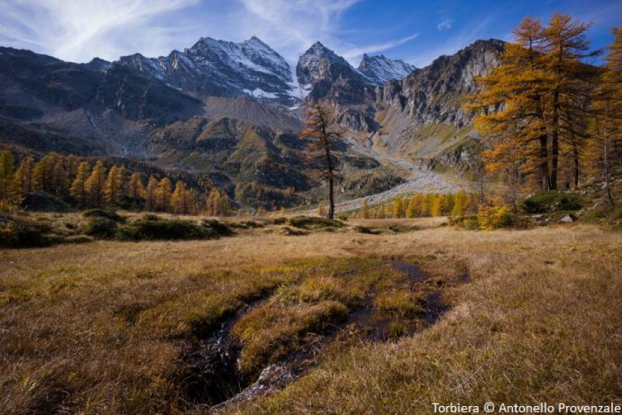 Vote for APOLLO project in the Gran Paradiso National Park!